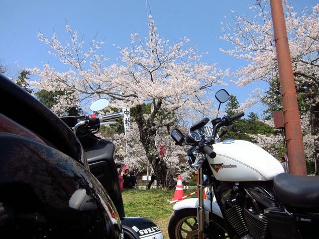 04_相馬中村城.JPG