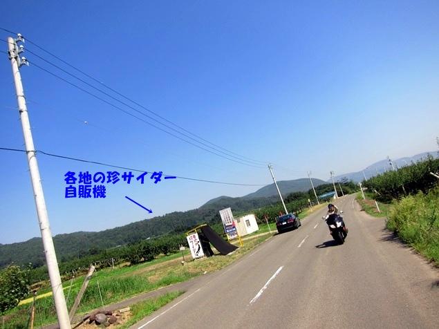05_広域農道.JPG