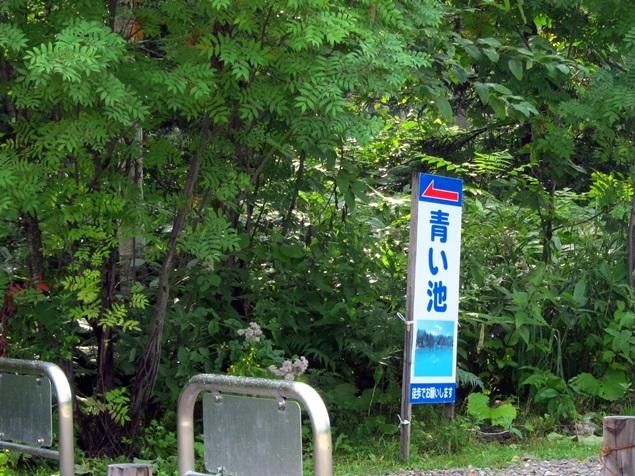 11_青い池.JPG