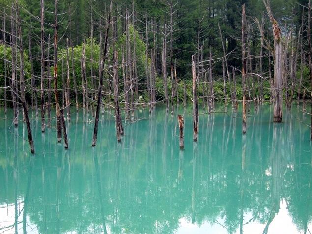 15_青い池.JPG