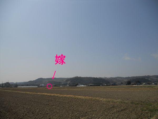 20110410_110310.JPG