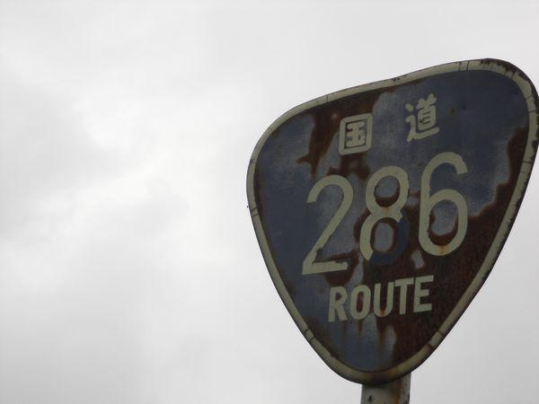 20110702_153904.JPG