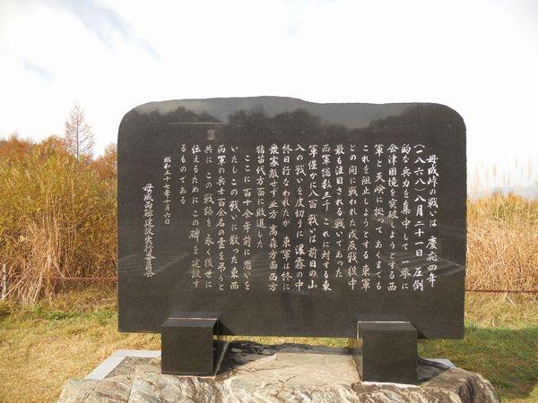 20111105_093306.JPG