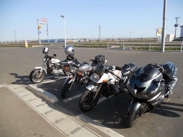 20111127_093334.JPG