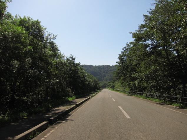 27_湖畔の道.JPG