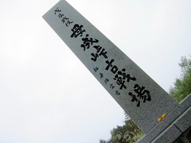 35_BONARI_GREEN_LINE.JPG