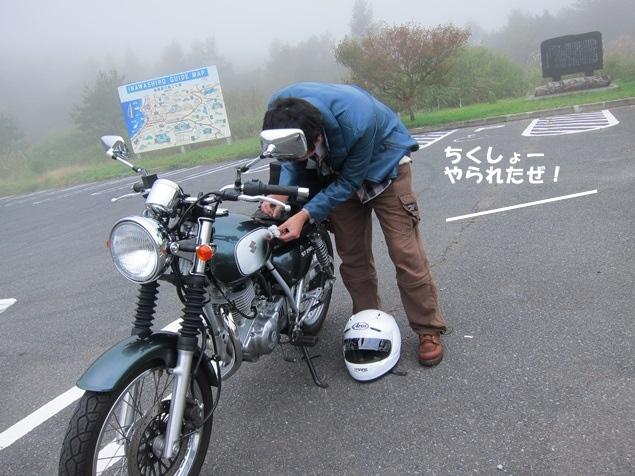 37_格闘中.JPG