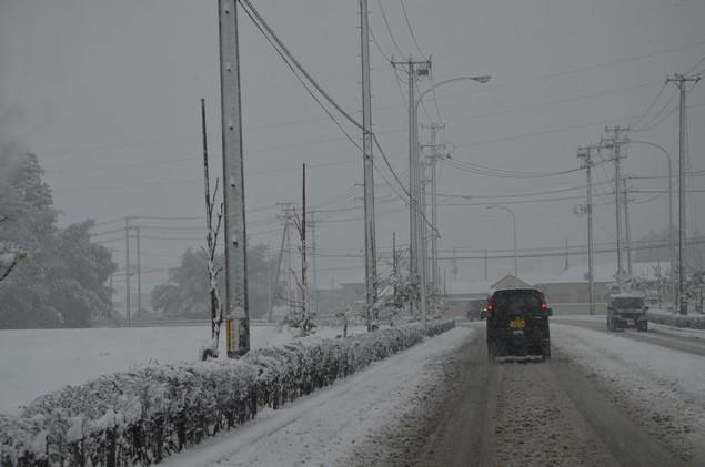 大雪だよ.JPG