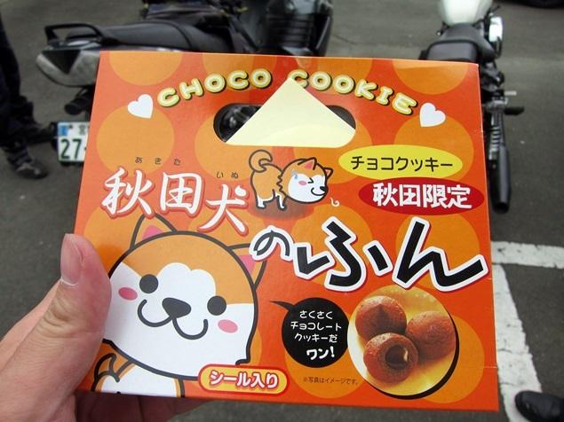 11_秋田犬のふん.JPG